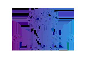 genesis app transparent logo